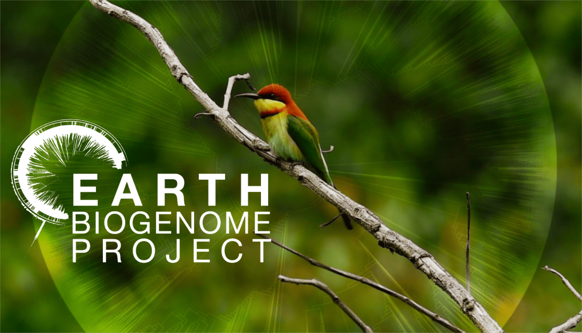 New collaboration to develop Genetic Species Knowledge Index at the Earth  Biogenome Project Conference 2019 - Serving Conservation - Species360
