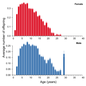 Offspring by Ages of the Parents